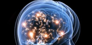 Interesting Facts About Brain in Hindi