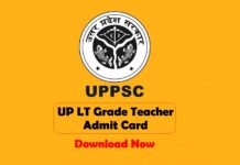 up lt grade teacher admit card download now